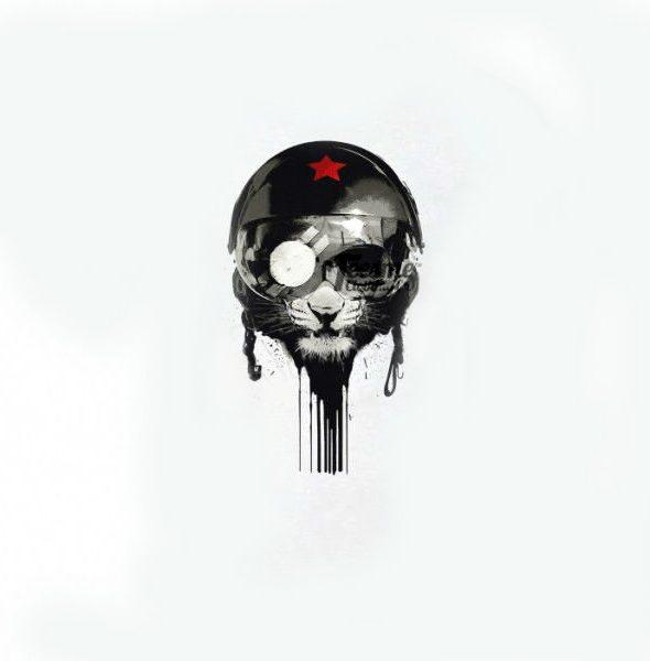 helmet-cat_101