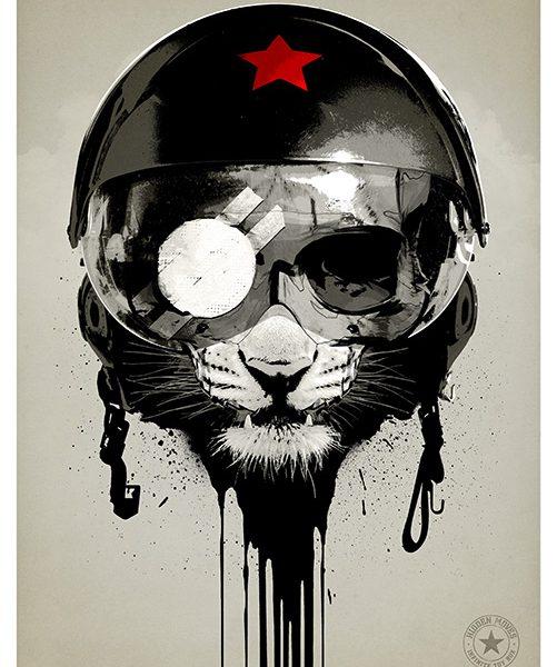 helmet-cat7777