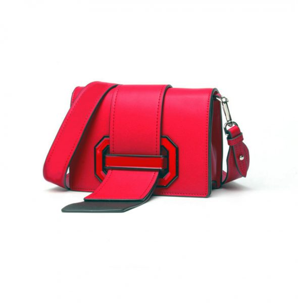 RED RIBBON BAG 4